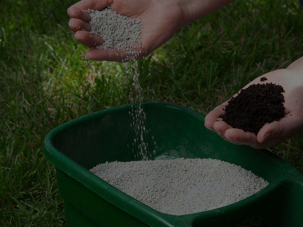 Tampa Fertilization