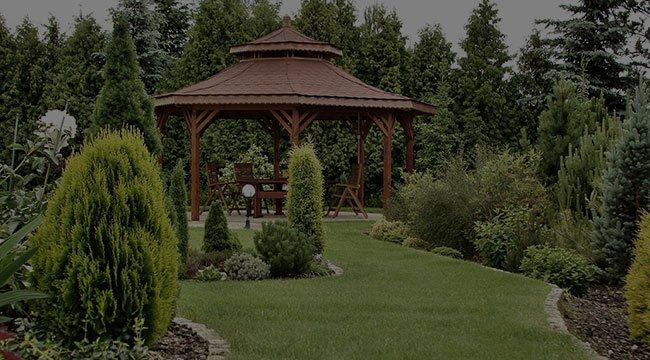 Tampa Garden Design