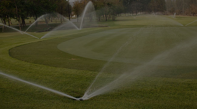 Tampa Irrigation