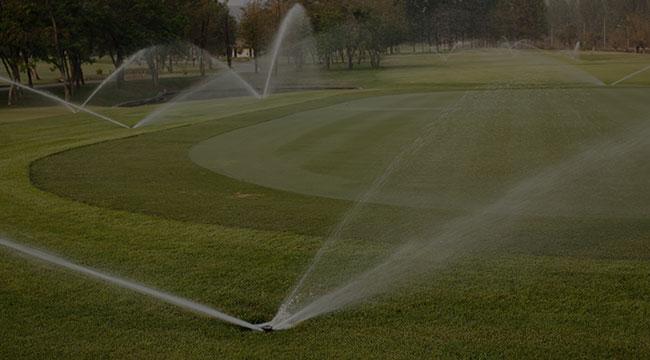 Tampa Irrigation
